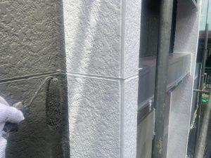 外壁のメイン色の塗装